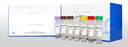 Viral RNA Auto Extraction & Purification Kit